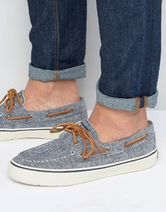 Casual Uomo sperry